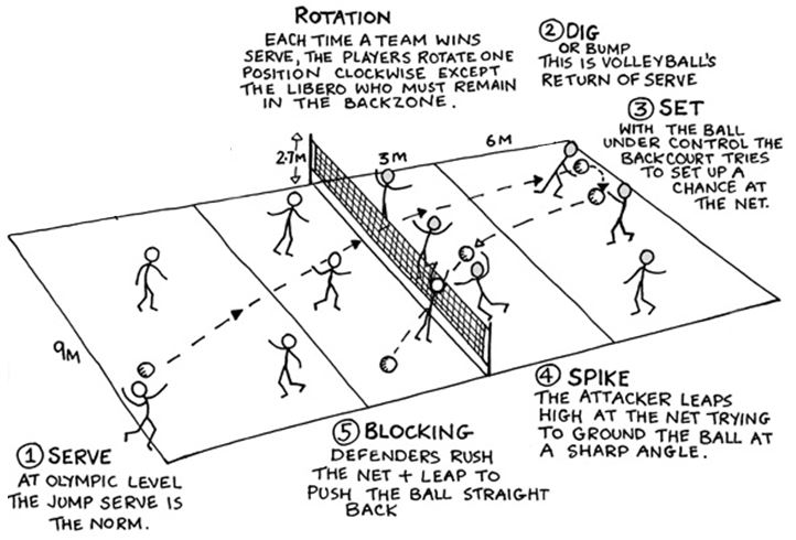 barryvolleyball volleyball basicsVolleyball Court Diagram With Positions Quotes #18