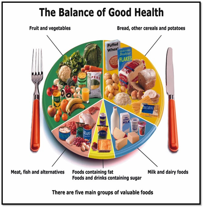 define the basic nutritional requirement of children and young people to ensure a balanced diet and  Although you may feel as though advice about nutrition is constantly changing, the basic ideas behind my four precepts in these people, the gluten-free diet is the only animals that are kept by humans also benefit from a healthy diet and the requirements of such diets may be very.