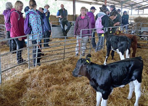 West Stour farm visit