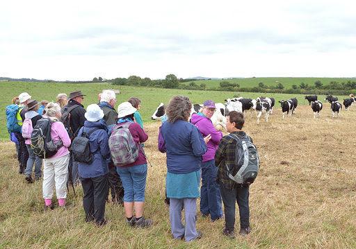 Farm visit, West Stour