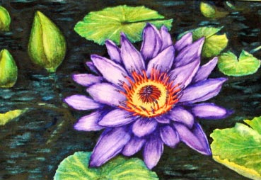 Margaret_Guthrie_Water_Lilly.jpg