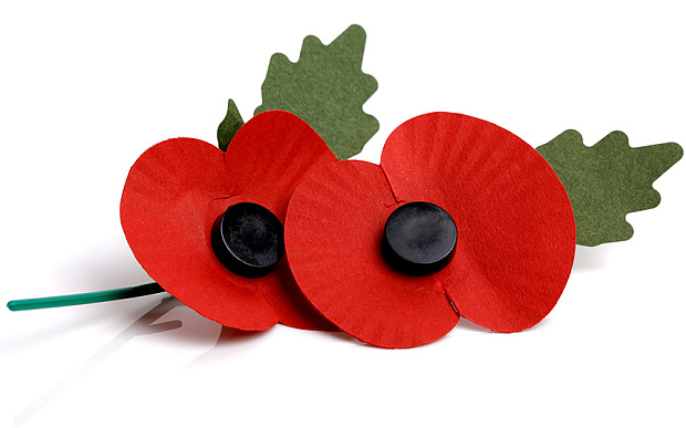 This image has an empty alt attribute; its file name is poppy-clipart-british-value-724816-9089163.jpg