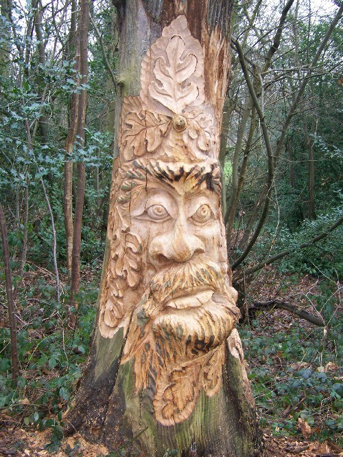 Lesnes abbey conservation volunteers tree carving of