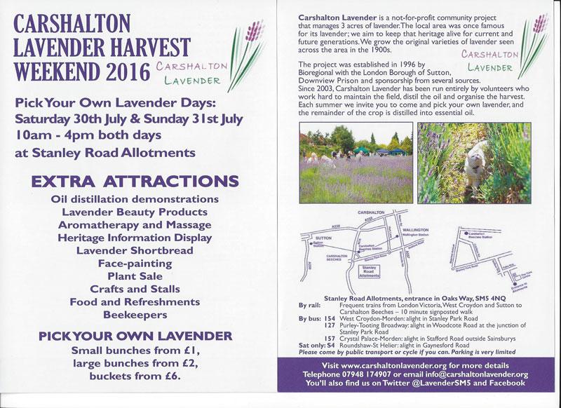 Harvest Flyer 2016