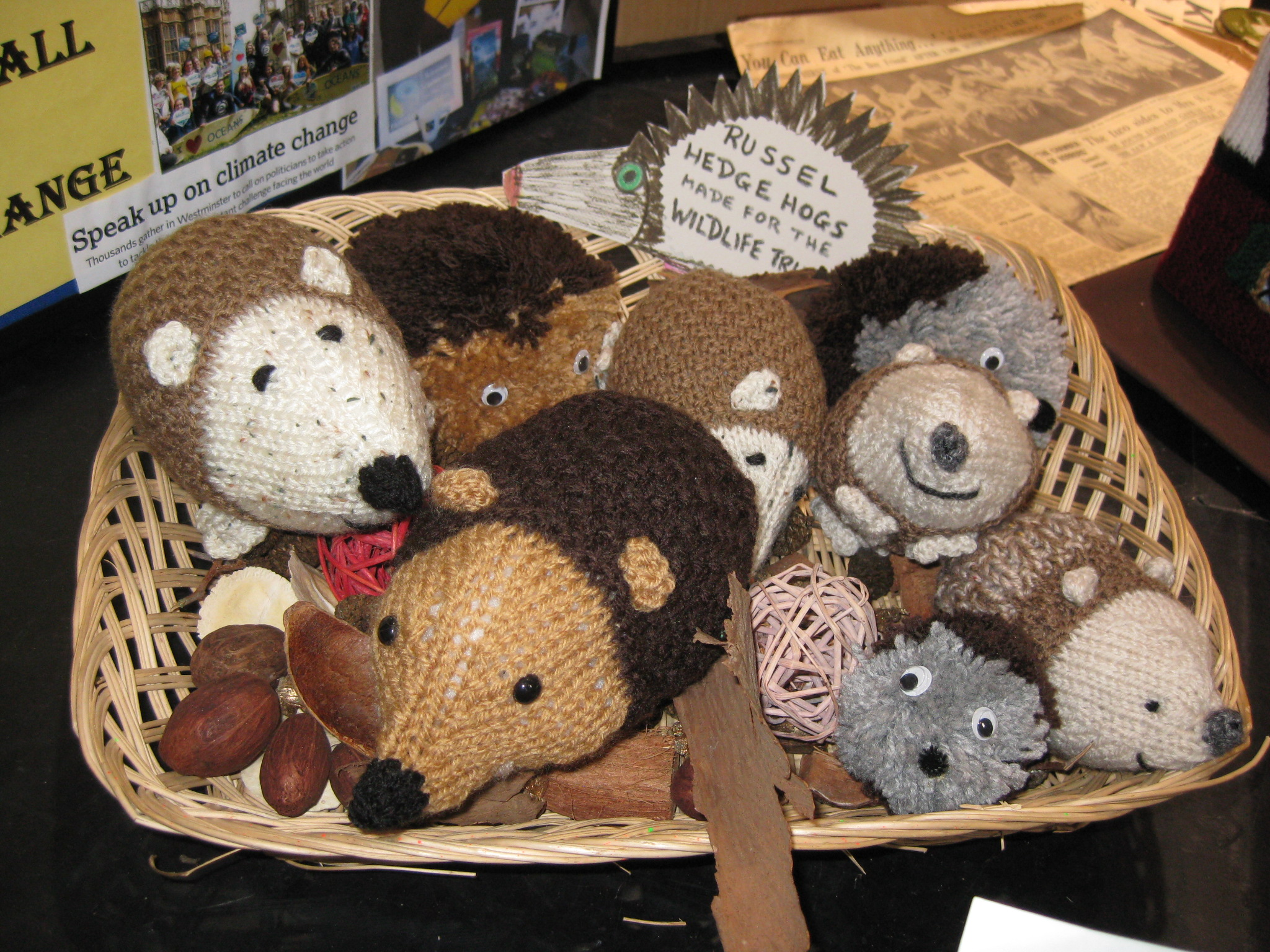 Headgehogs for the Wildlife Trust