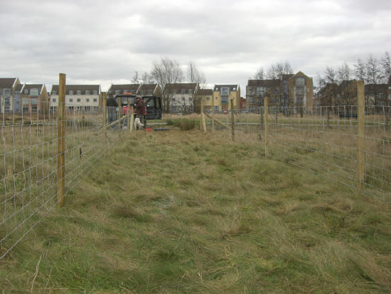 Fence up and tensioned