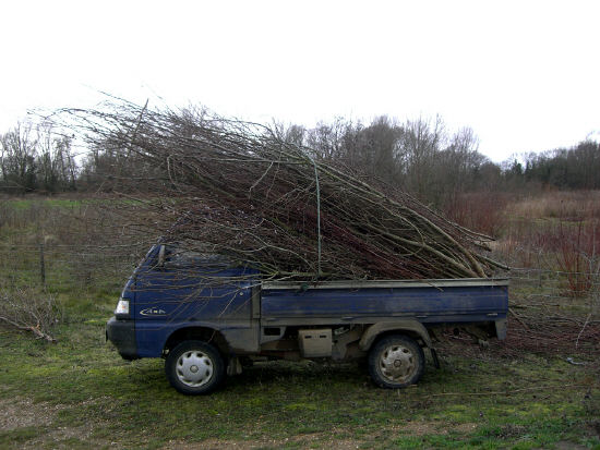 Van loaded with willow