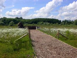 Pathway down to birdhide