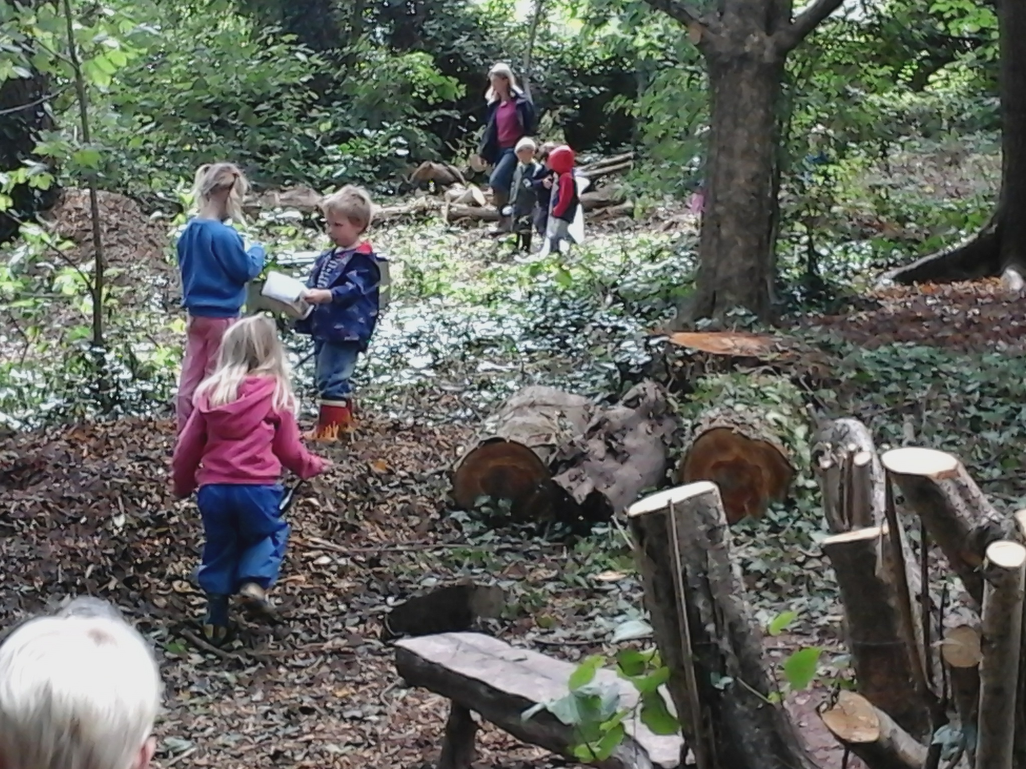 Forest school outdoors thorverton