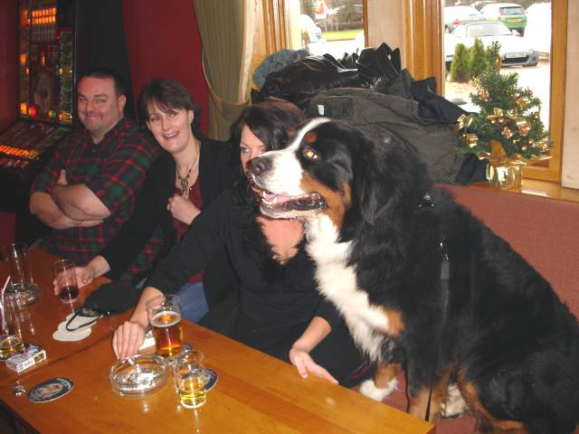 Bernese Breeders Association Of Great Britain Faqs