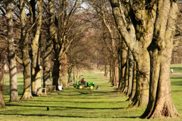 The Avenue at Towneley