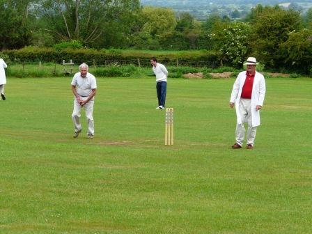 wiki single wicket cricket