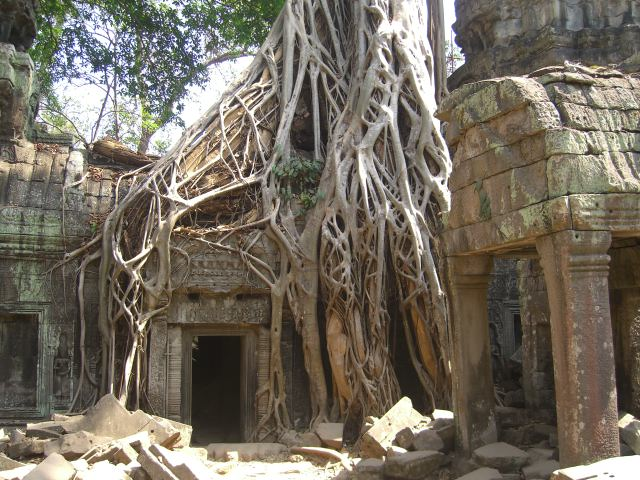 Wierd things happening at Ta Prohm