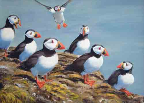 PUFFINS-A-for-webPenny Dron.jpg