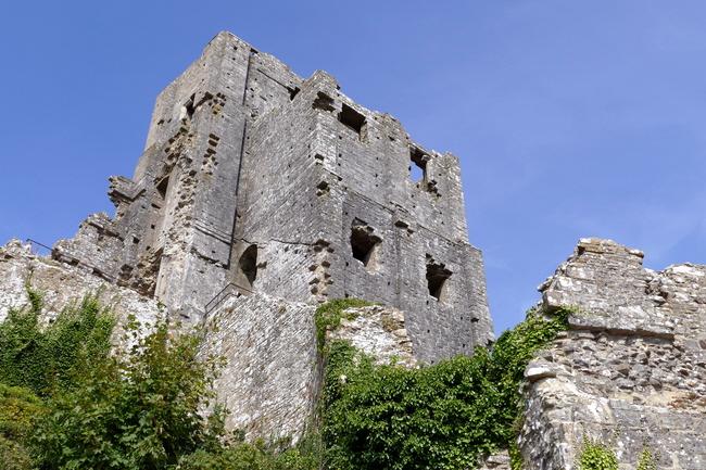 WSNTA Corfe Castle