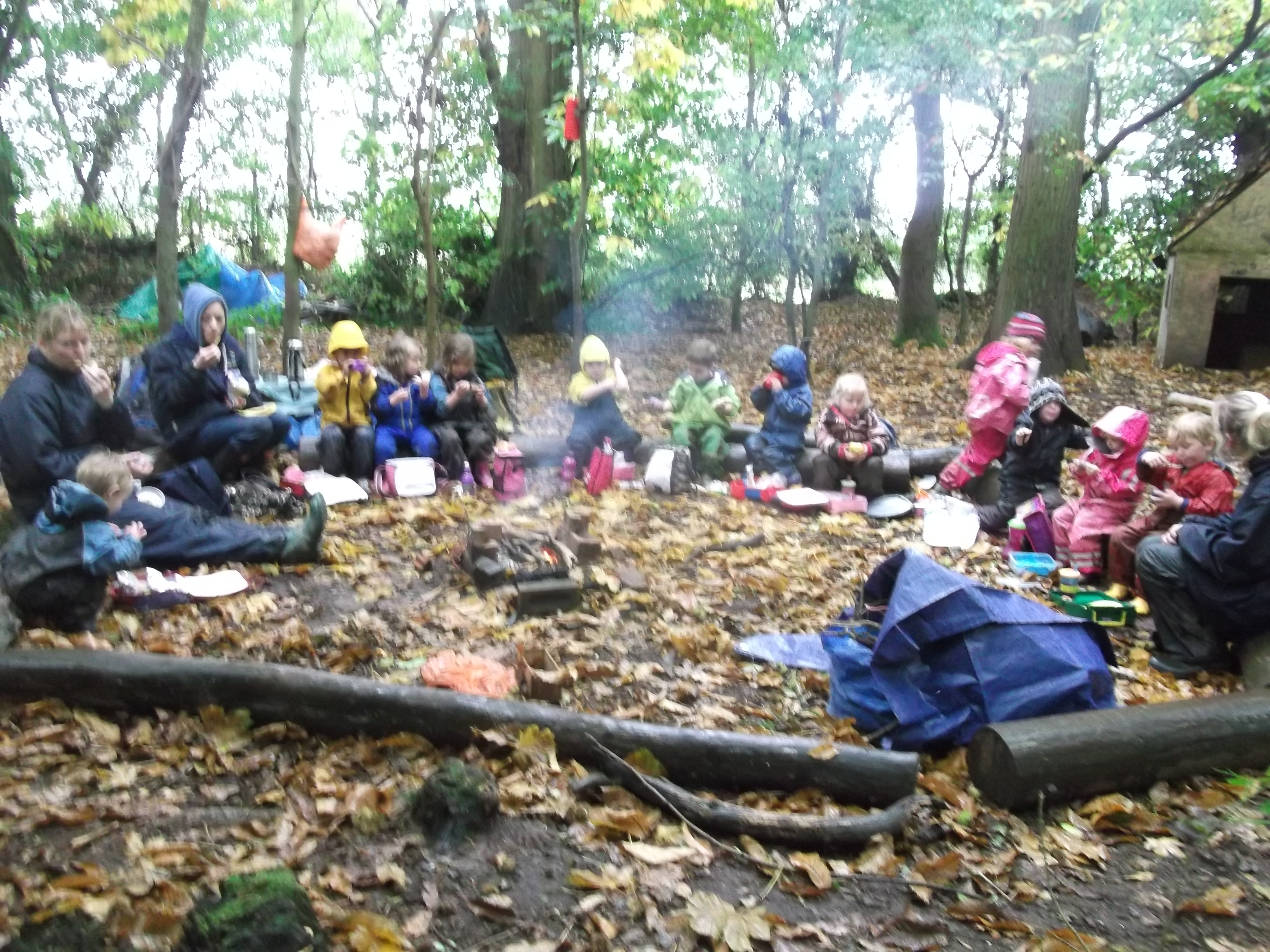 forest schools This academic year, and into the future, we are embracing the forest schools  ethos at heatherlands primary at heatherlands, we want our children to have.