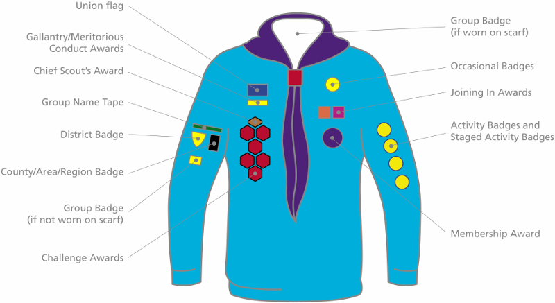 14th Aldershot Scout Group - Beaver Badge Placement