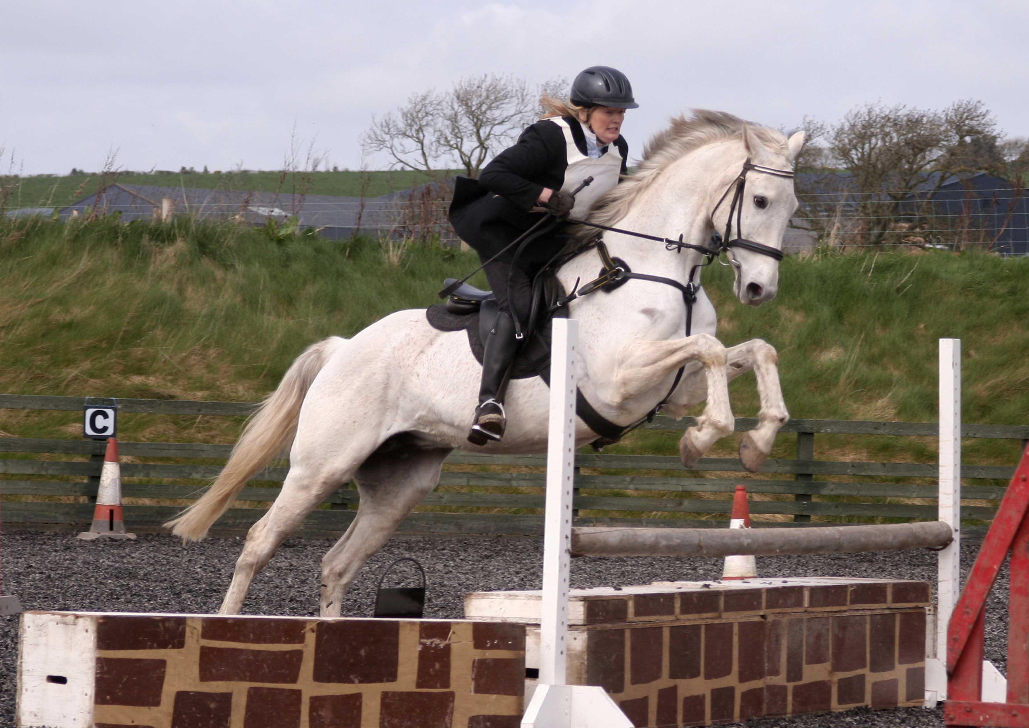 Edinburgh Amp District Riding Club Photo Gallery